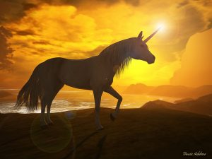 Becoming a unicorn: rarely a practical business goal.